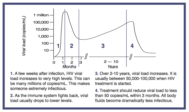 Fig 2 Viral load levels ad infection progresses