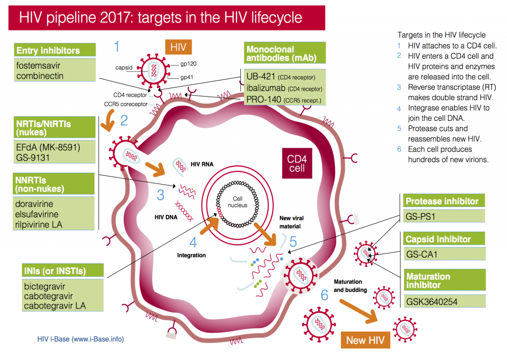 Viral lifecyle and drug targets slide 2017