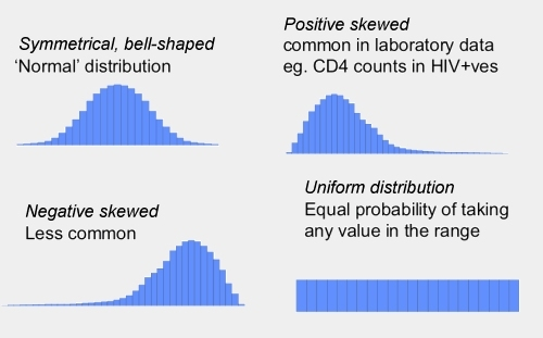 Data distribution shapes