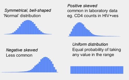 Data distribution shapes