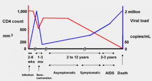 CD4 and viral load without treatment