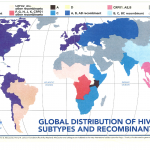 Global distribution of HIV subtypes