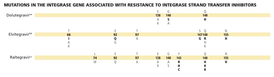IAS-USA Integrase 2013